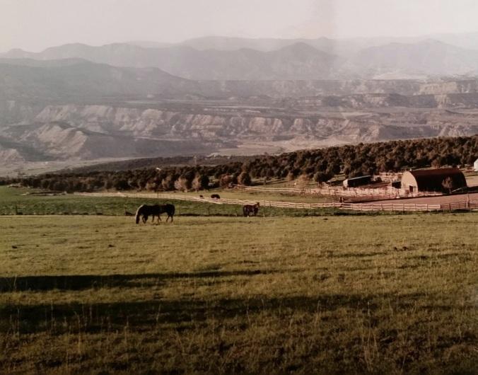 Rifle Ranch View
